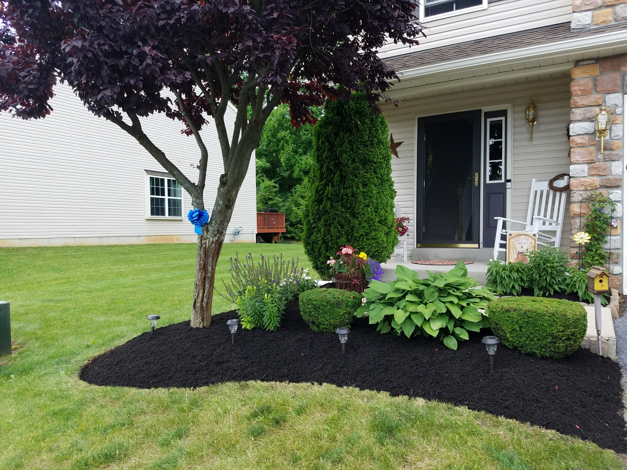 Landscaping precision landscaping services llc for Landscaping services